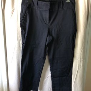 Ann Taylor Curvy Cropped Pants — Navy (Size 12)
